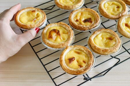 delicious egges tart fresh from oven. Stock Photo