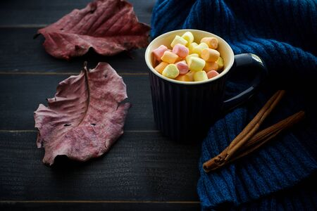 Hot chocolate with marsmallow candies. Stock Photo
