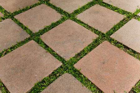 Brick and grass ,  diagonal of grass photo