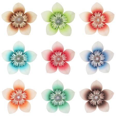 9 isolated origami flowers different colours on a pure white 9 isolated origami flowers different colours on a pure white background stock photo mightylinksfo