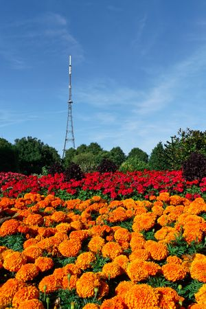 Crystal Palace Mast behind colourful flowerbeds. The mast used to be Londons tallest structure - before the building of One Canada Square.  Stock Photo