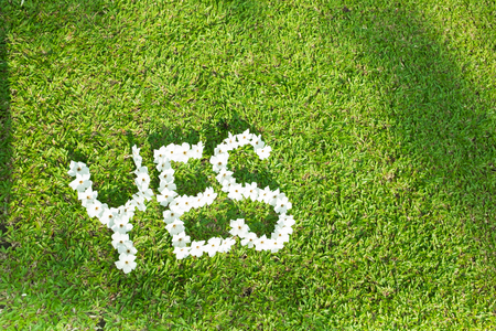 Picture of green lawn write yes with white flowers focus on flowers picture of green lawn write yes with white flowers focus on flowers stock photo 98965004 mightylinksfo