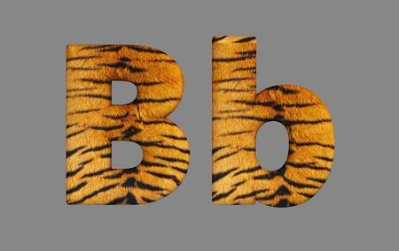 fur: Form letters from program design 3d image of a tiger skin. Stock Photo