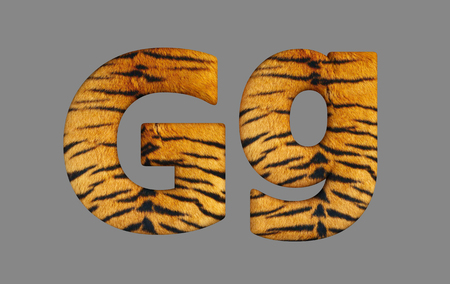 tiger skin: Form letters from program design 3d image of a tiger skin. Stock Photo