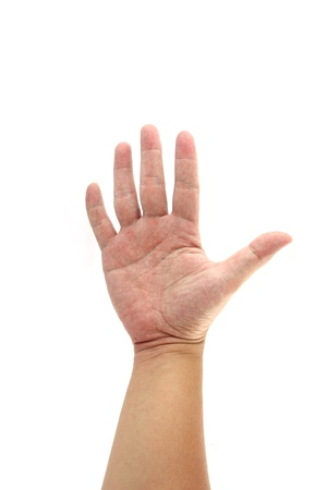 Human hand  isolated on white background photo