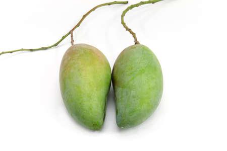 Green mango on white isolated background. Stock Photo - 9772201