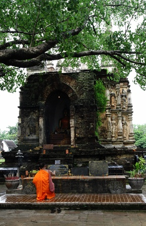 prayer rug: Buddhist monk praying pagoda under the Bodhi tree, in chet yot temple, Chiang Mai Thailand Stock Photo