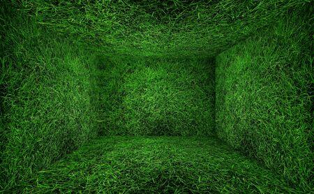 invernadero: Sala de hierba