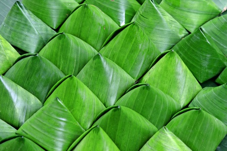 piramide alimenticia: Ceñido de hoja de plátano de postre