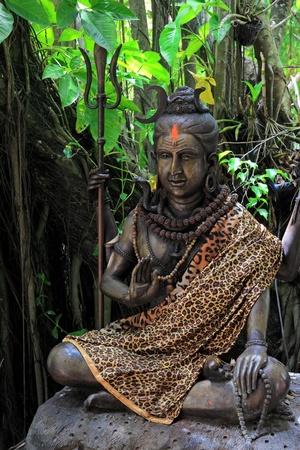 Hindu God Vishnu in the wild photo