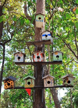 Le Bois de la famille nichoir sur l'arbre Banque d'images