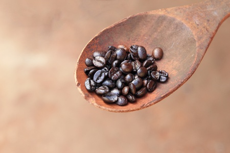 coffee beans on wooden spoon photo