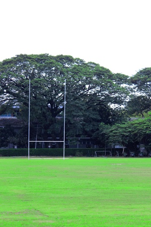 pitch: Rugby field