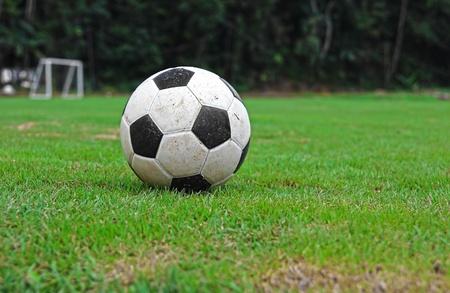 terrain foot: Football sur l'herbe verte Banque d'images