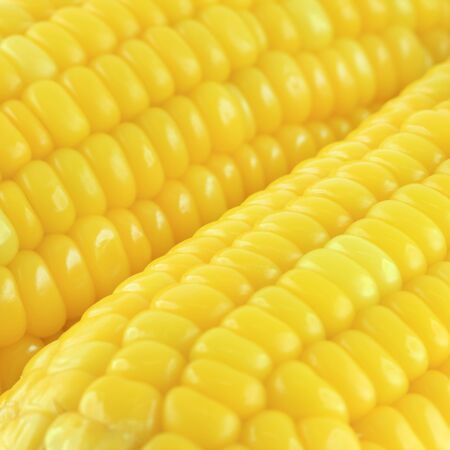 Close up corn pattern background. photo