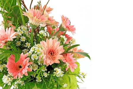 floral arrangement: Vase of flowers on white background