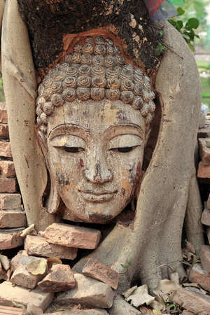 head of buddha photo