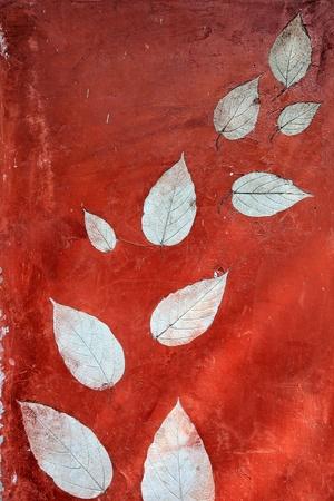 Vintage Leaf impression in stone photo