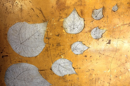 Vintage Leaf impression in stone photo
