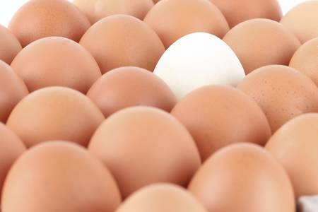 close up Eggs pattern background photo