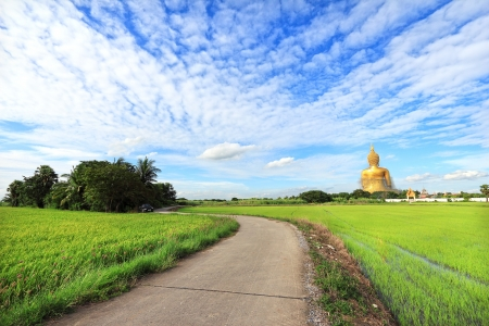 Big buddha with rice field Stock Photo - 14408120