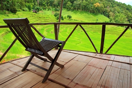 wooden chair in nature photo
