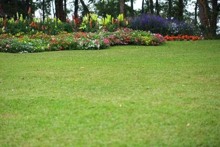 flower bed: Landscaped Formal Garden Park