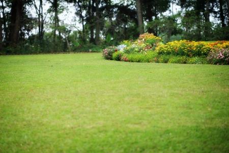 massif de fleurs: Parc paysager Jardin classique Banque d'images