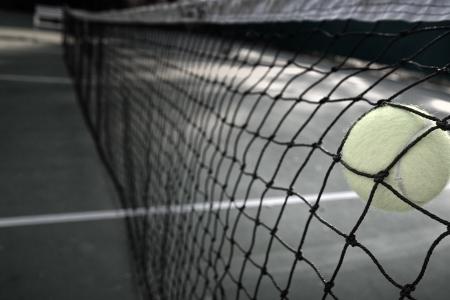 Tennis ball in net B   W