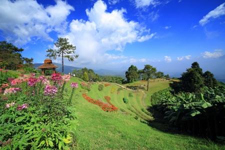 nam: Mountain view,Huai Nam Dang, Chiang Mai, Thailand