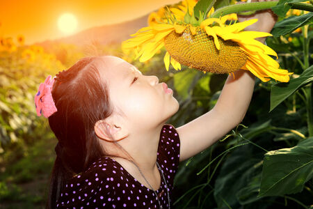 Cute asian child with sunflower photo