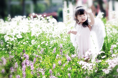 Little fairy in flower field photo