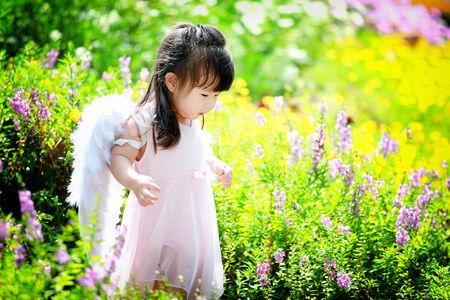 Little fairy in flower field photo