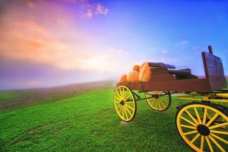 cinderella pumpkin: carriage on green grass at sunrise Stock Photo
