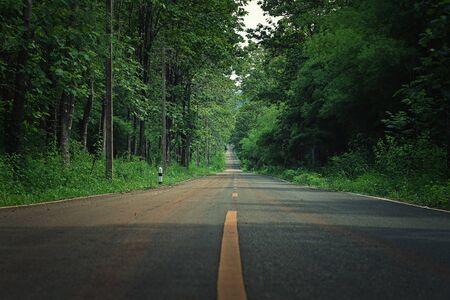 krajina: venkovské silnici v dopoledních hodinách