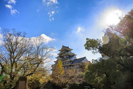 nara park: Osaka Castle with blue sky.