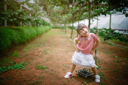 grape field: happy asian little girl in grape field
