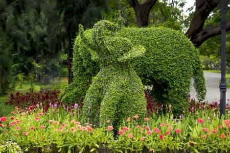 boom kappen: olifant, het kappen van bomen