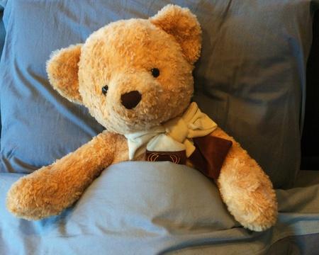 teddybear: Teddybear