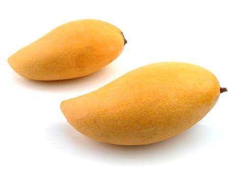 Mango of Thailand fruits of famous, Mangifera indica on white background