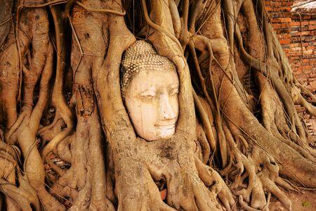 buddha image: Head of Buddha Image