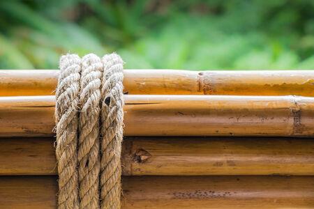 Dry bamboo with rope Фото со стока