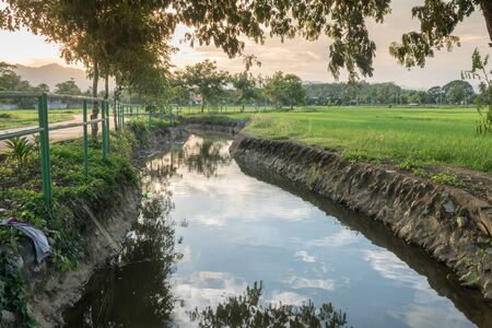 hdr: River and rice fields landscape HDR Stock Photo