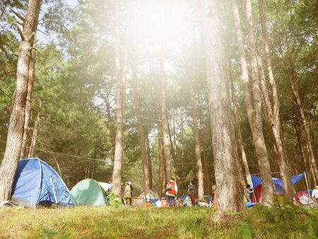 People spread tents in beautiful places in Pang Ung.