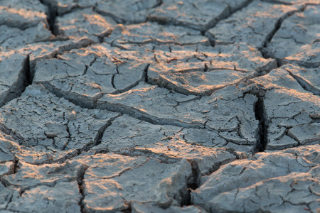 extremely dry soil with fissures in sunlight