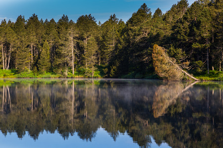 green forest and blue sky perfectly reflected on dark water surface of lake etang de la gruere, Switzerland