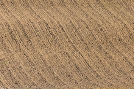 newly furrowed brown farmland with symmetrical furrows Archivio Fotografico - 117724224