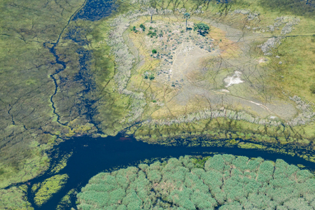 aerial view on natural Okavango Delta landscape, river, trees, grassland