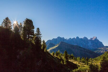 sunrise at pala group mountains pale di san Martino with blue sky and trees and green meadow Imagens