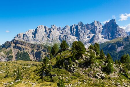 peaks of pala group mountains pale di san Martino with green meadow and trees